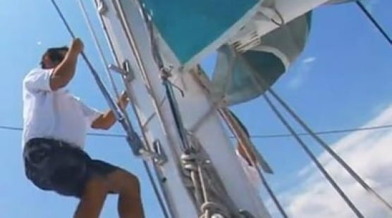 Katamaran für Ausflüge Bucht von Palma – Taiti 75