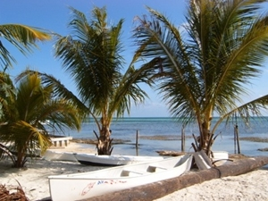 Belize_Palmenstrand