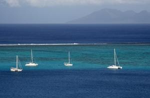 polynesia_arrecife