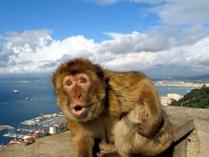 Costa_del_Sol_Gibraltar